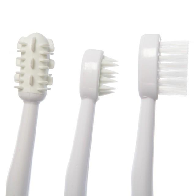 beebi hambaharjad
